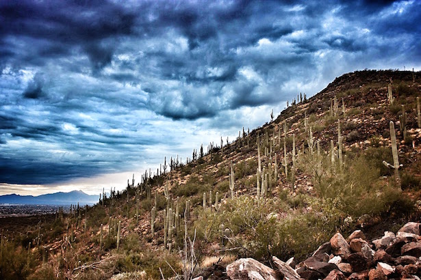 Clouds rolling in over the Sahuaro Cactus