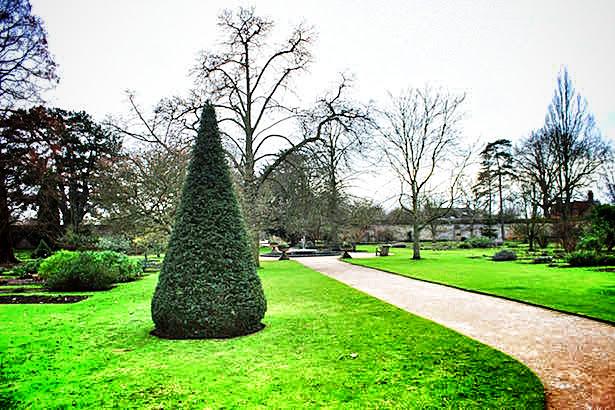 The Botanic Gardens at Oxford